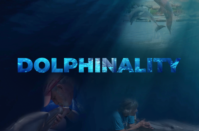Dolphinality
